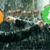 Биткоин vs Bitcoin Cash. Как зародилась вражда